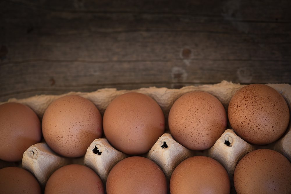 Why You Need Healthy Eggs In Your Life